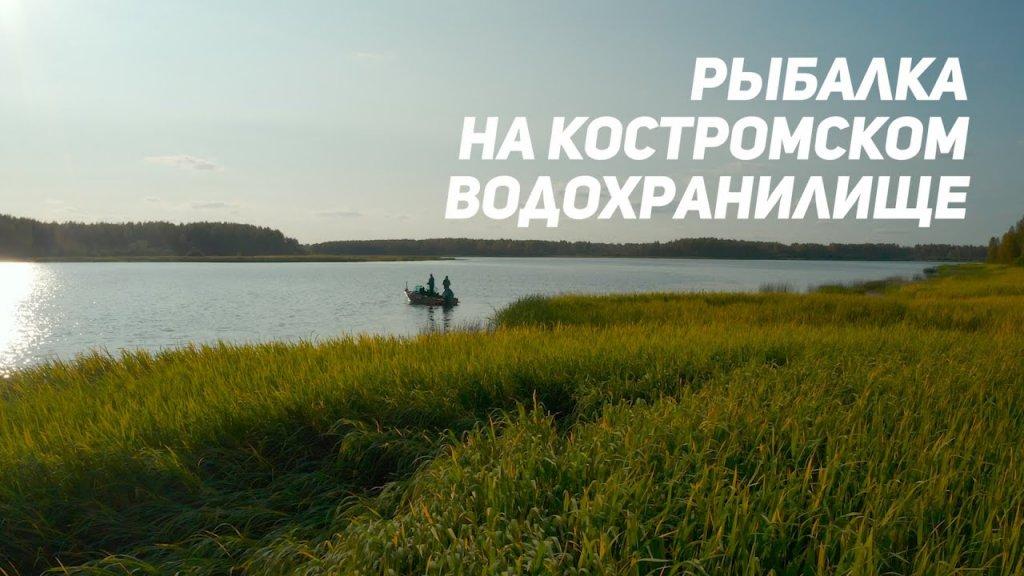 Рыбалка на Костромском водохранилище. Рыбий жЫр 2020