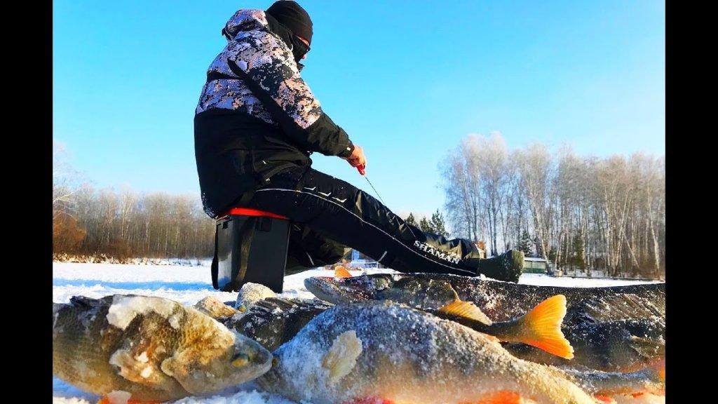 Мешок рыбы с одной лунки. Клев на балансир. Зимняя рыбалка2020-2021