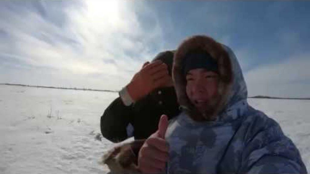 Ханты нашли озеро с замором рыбы. Браконьеры или «спасители» рыбы