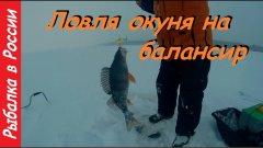 Ловля окуня зимой на балансир.  Клёв как с пулемёта !