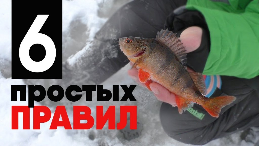 КАК НАЛОВИТЬ ОКУНЕЙ НА МОРМЫШКУ. Чёткая схема действий, чтобы поймать свою первую рыбу!!!