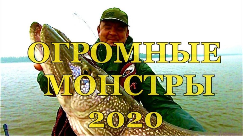 ОГРОМНАЯ ЩУКА здесь кишит. Рыбалка 2020. Рыбалке на спиннинг