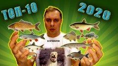 ТОП-10 Самых Рыб 2020.