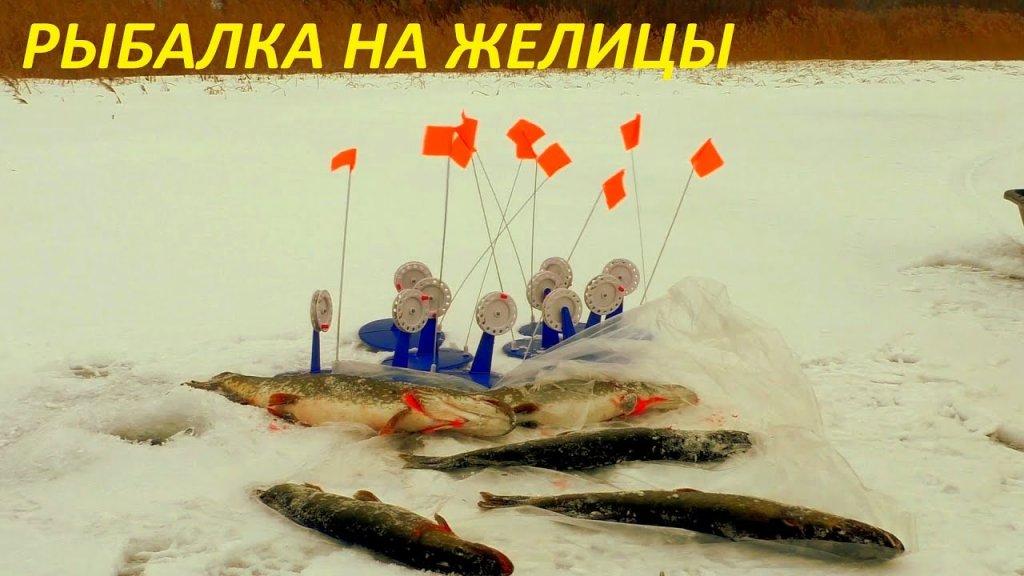 Новогодняя рыбалка на жерлицы