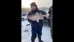 Судак на 8 кило. Первый трофей, зима 2021г. на Обском водохранилище Новосибирска