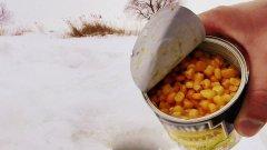 Прикормил КУКУРУЗОЙ Зимой! Клюет как из Пулемета! Подводная съемка