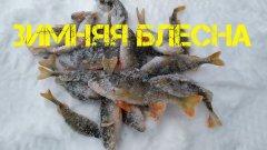 Попал на выход. Ловля окуня на блесну и балансир зимой. Зимняя рыбалка 2021.