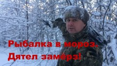 Рыбалка в мороз. Дятел замёрз!