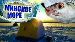 Минское море со льда | зимняя рыбалка в беларуси