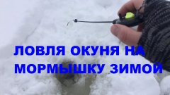 Ловля окуня на мормышку зимой