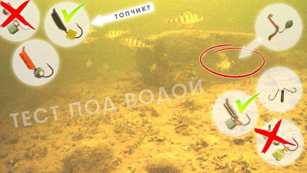 Какая мормышка на окуня лучше в глухозимье? подводная съемка рыбалки