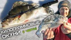КРУПНЫЙ окунь на балансир в глухозимье / Зимняя рыбалка 2021