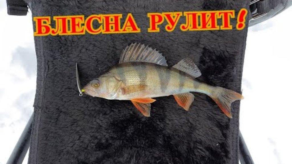 Уловистая БЛЕСНА в Глухозимье! Рыбалка 2021 на блесну!