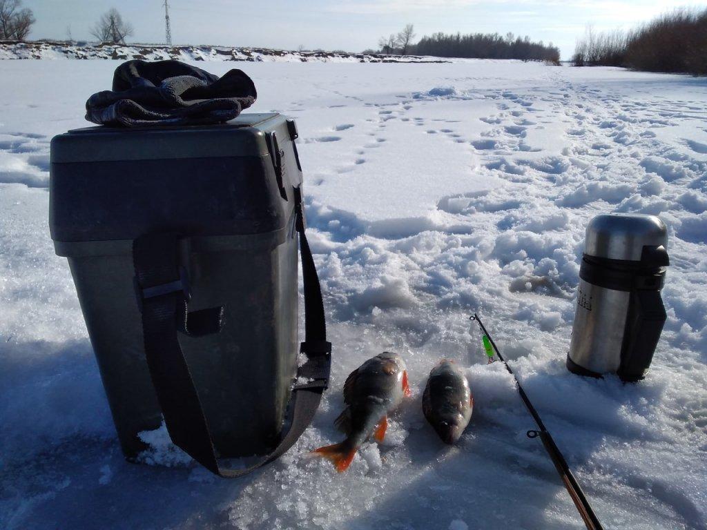 Зимняя рыбалка в Астрахани на блесну.