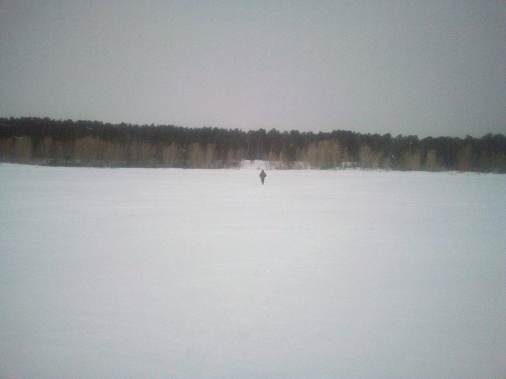 Все тропы замело. Снега по колено.