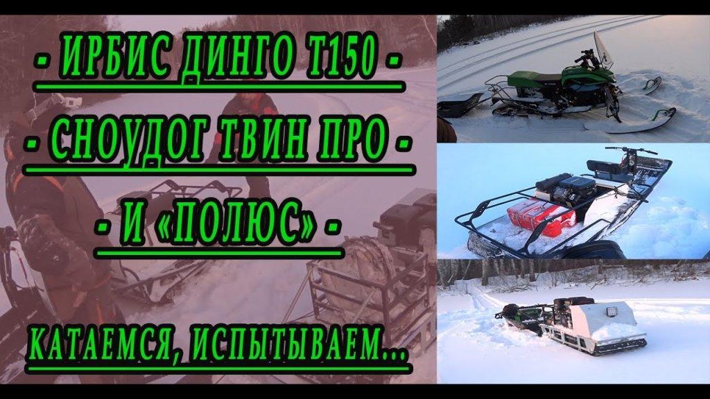Совместные покатушки на снегоходах. Ирбис Динго Т150, Полюс и Сноудог Твин Про.