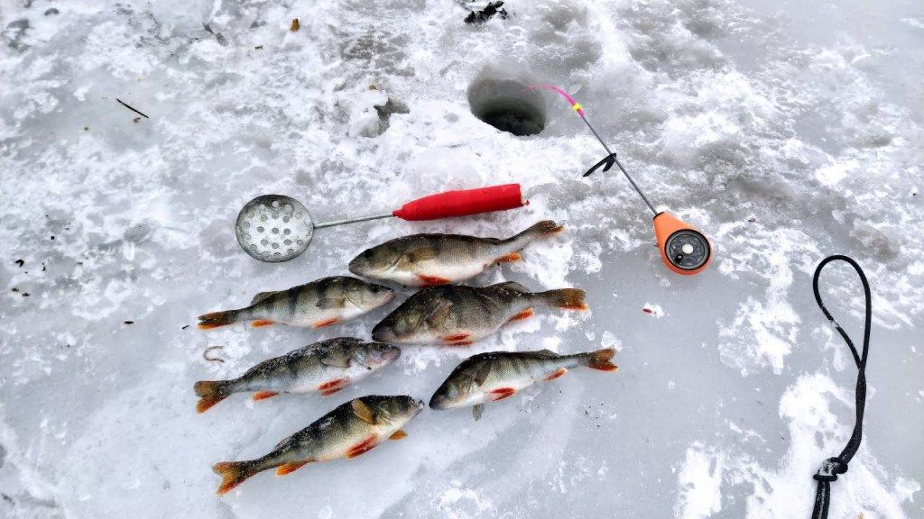 """Первый раз рыбачу на озере """"Бабинское"""". Ловля окуня в марте 2021."""