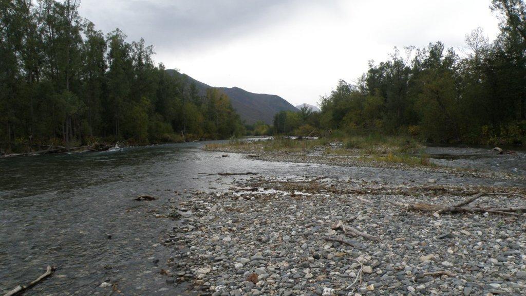 Река Левая Лесная. 2001