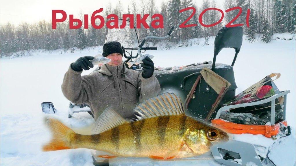 Зимняя рыбалка 2021! Ловлю окуня на блесну / см-002 - самодельный снегоход. Республика коми.