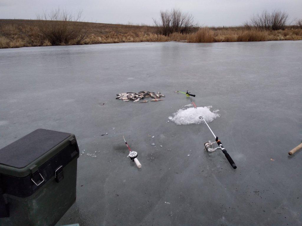 Зимняя рыбалка в Астрахани на блесну и мормышку