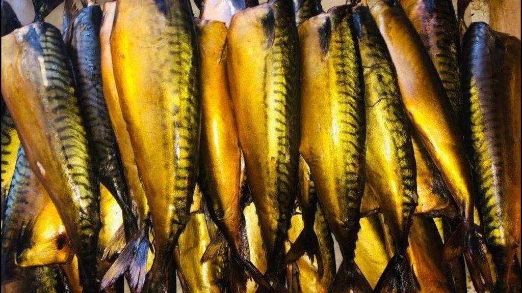 Копченая скумбрия не выходя из дома! Рыба холодного копчения!