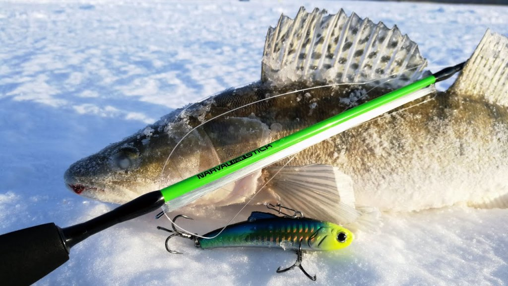 По любимым местам - за судачком! Зимняя рыбалка 2021 в сибири