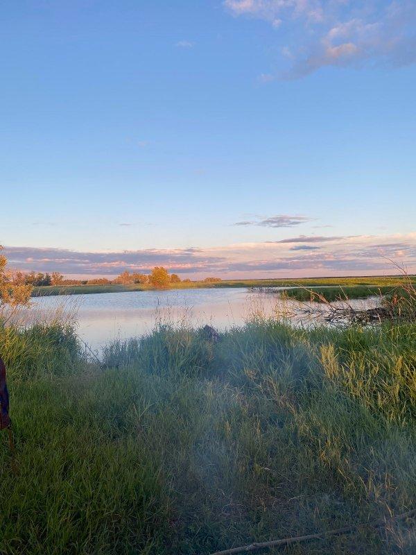 притока реки Омь