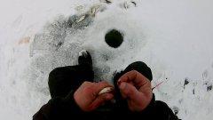 Зимняя рыбалка у дома на мормышку!!!
