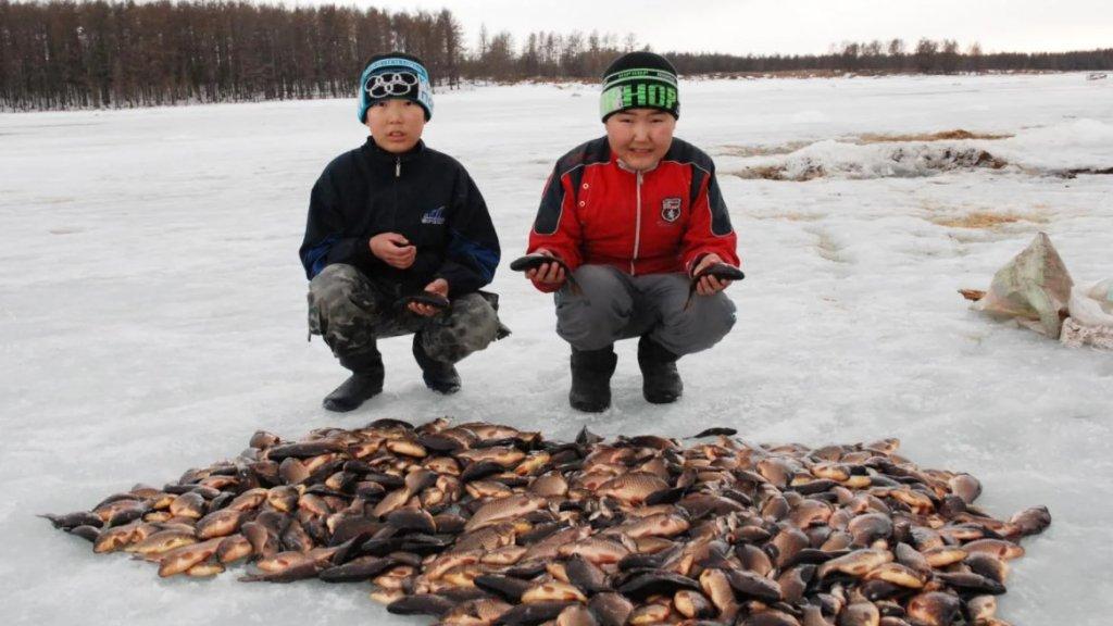 Куйуур. Традиционная рыбалка якутов весной