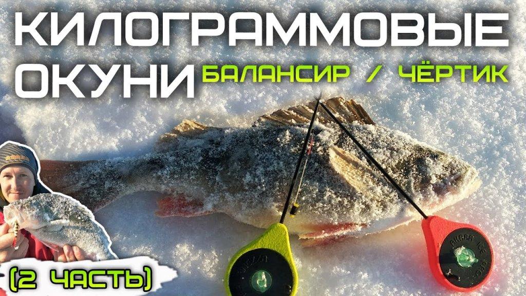 Ловля окуня на балансир и чертика зимой / зимняя рыбалка 2021