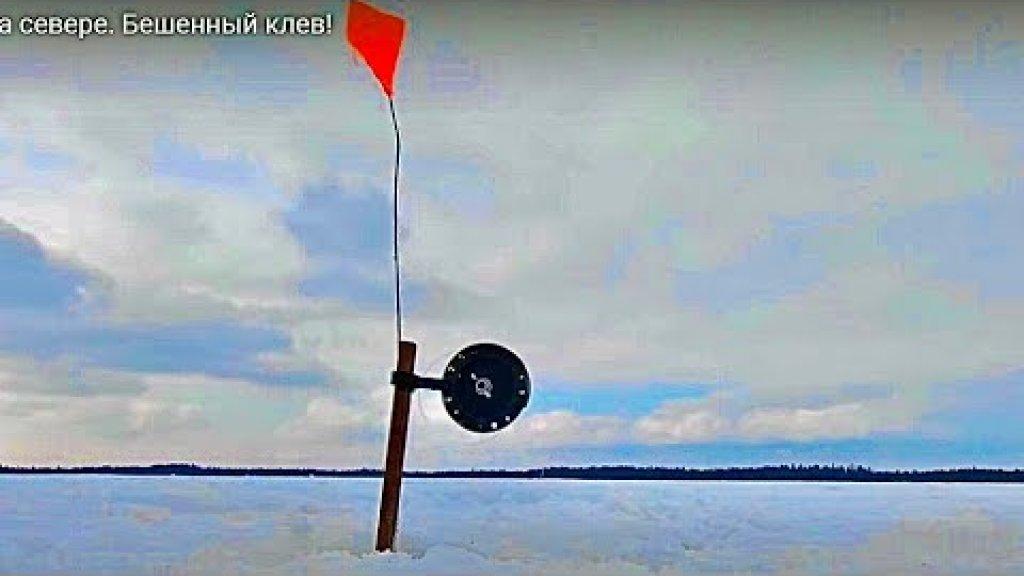 Жерлицы стреляют на незнакомом озере. Рыбалка на севере 2021