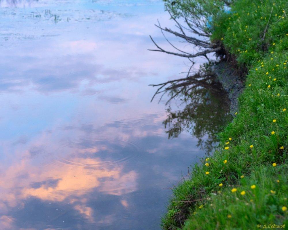 Июньский вечер  на берегу маленькой речки.