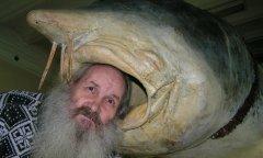 Белуга - 2 тонны. Похожа на акулу