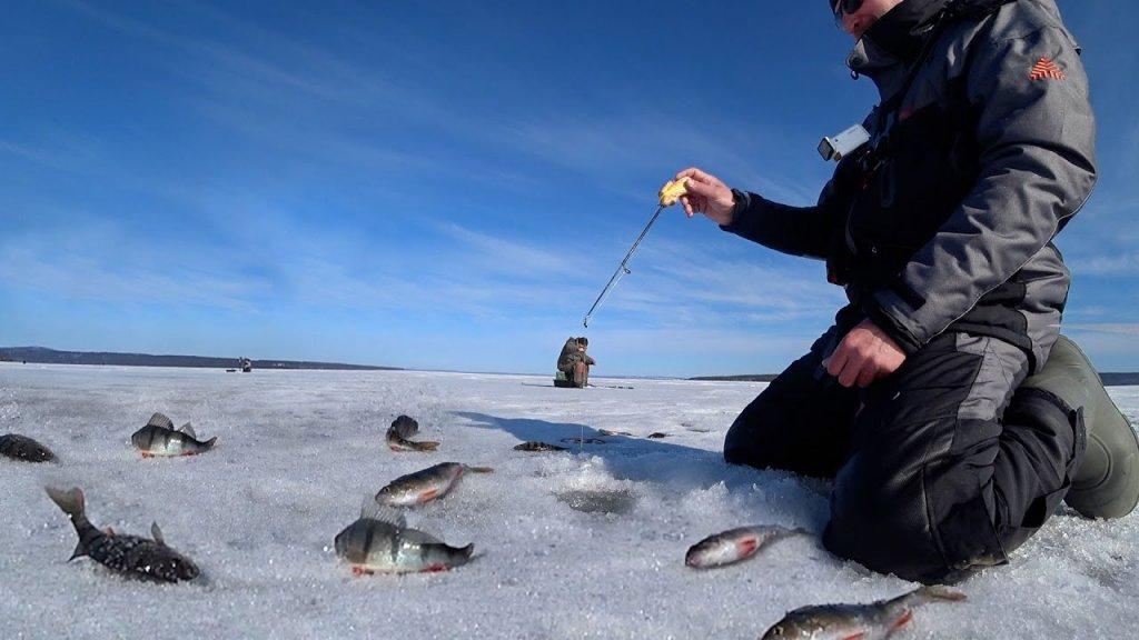 Апостол призвал на последний лед! Рыбалка на окуня