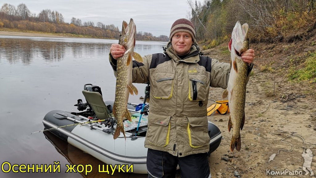Осенний жор щуки. Рыбалка троллингом на щуку и судака. Республика Коми