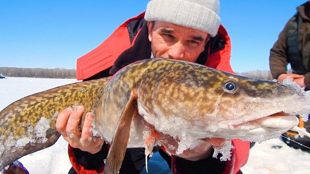 У местных в глуши попали на ход огромных рыбин!