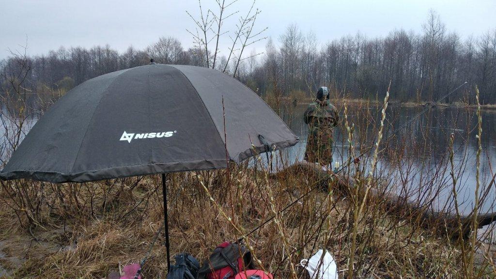 Ловля пассивного жереха ранней весной в дождь на реке Припять