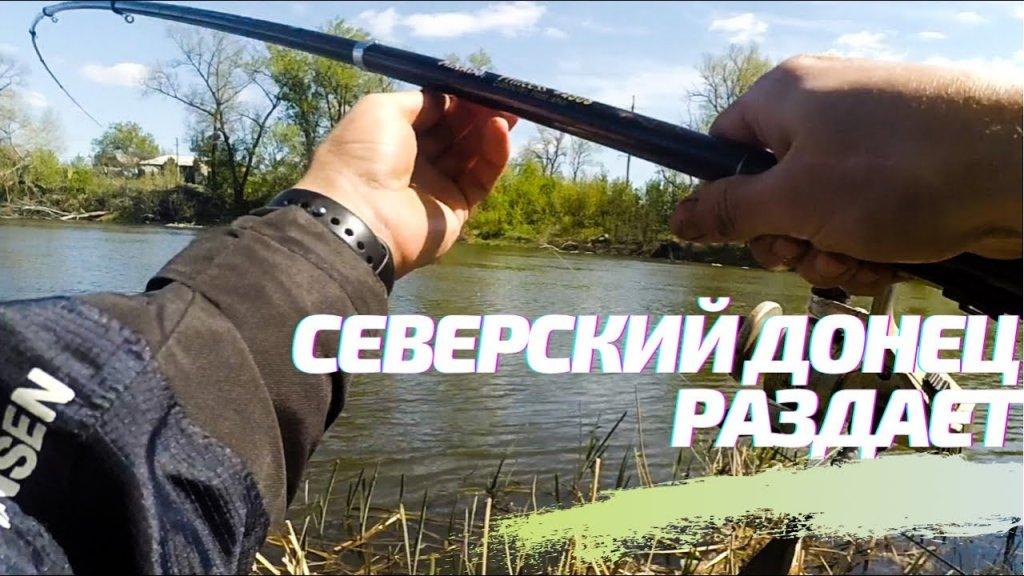 Огромные рыбы ломают удочку на СЕВЕРСКОМ ДОНЦЕ