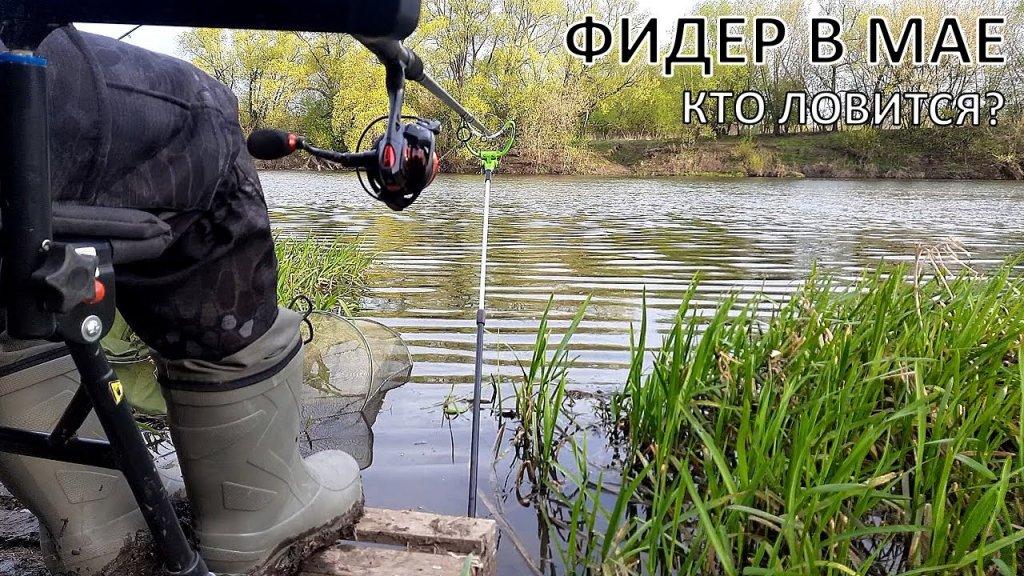 Рыбалка на фидер на реке   Фидерная ловля в мае