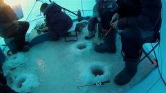 Страйк на рыбалке