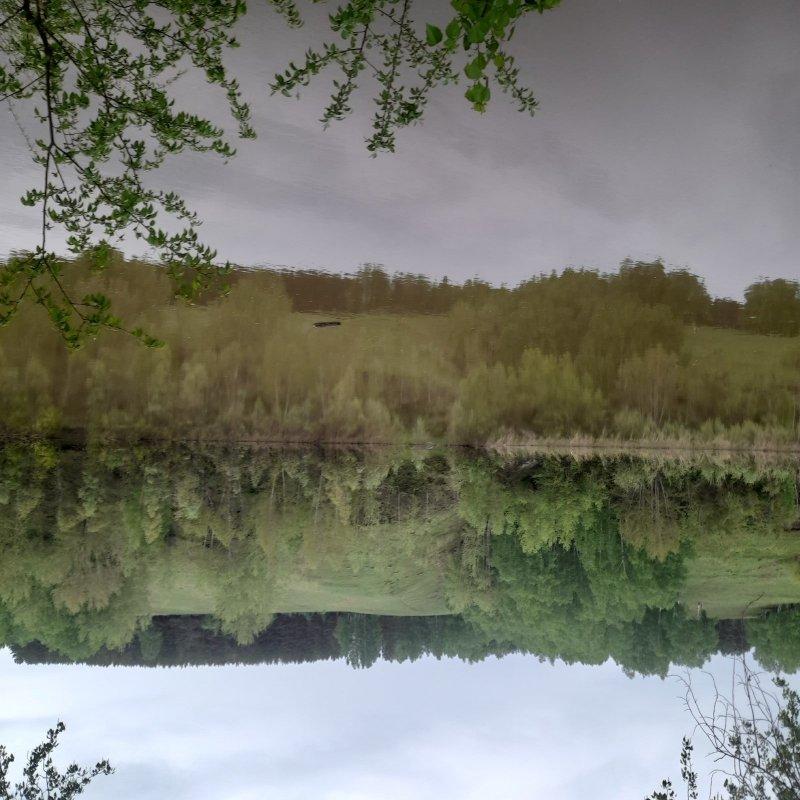Река Иня в мае.