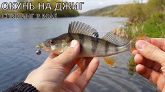 Рыбалка на ЛАЙТ СПИНИНГ на реке Дон | ОКУНЬ на Fanatik