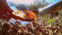 НЕ ОЖИДАЛ... Реакция Рыбы на Горелый Хлеб! Подводная Съемка