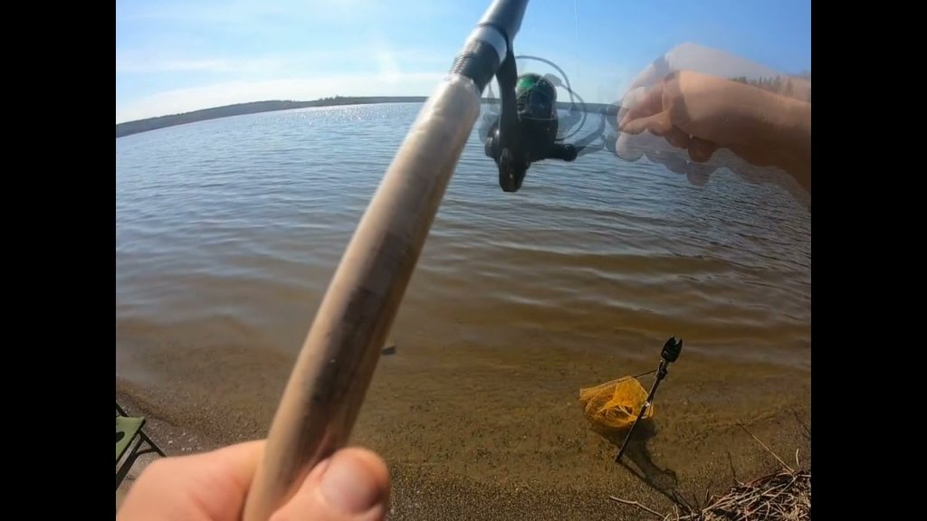 Приехал ловить подлещика, но клевала крупная плотва + непонятная рыба. Показываю что сработало