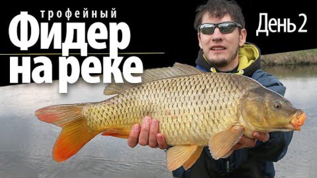 Фидерная рыбалка на реке / день 2 / ловля карпа 2021