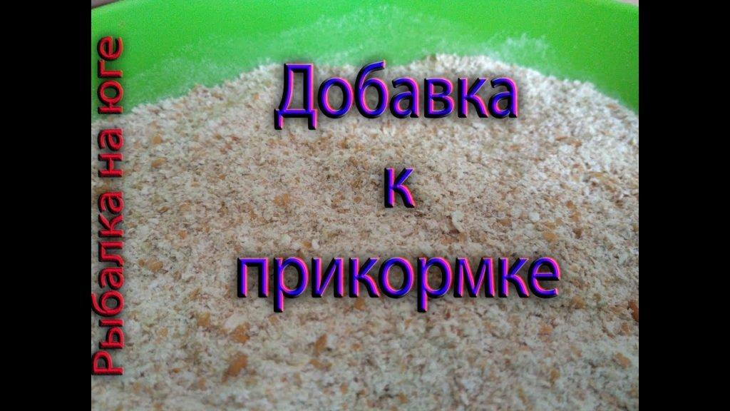 Пророщенная пшеница для рыбацкой прикормки.