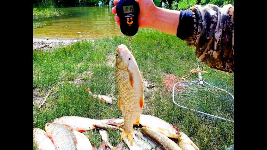 Этот воблер просто косит рыбу!лучший воблер на язя!оторвались по полной.рыбалка удалась