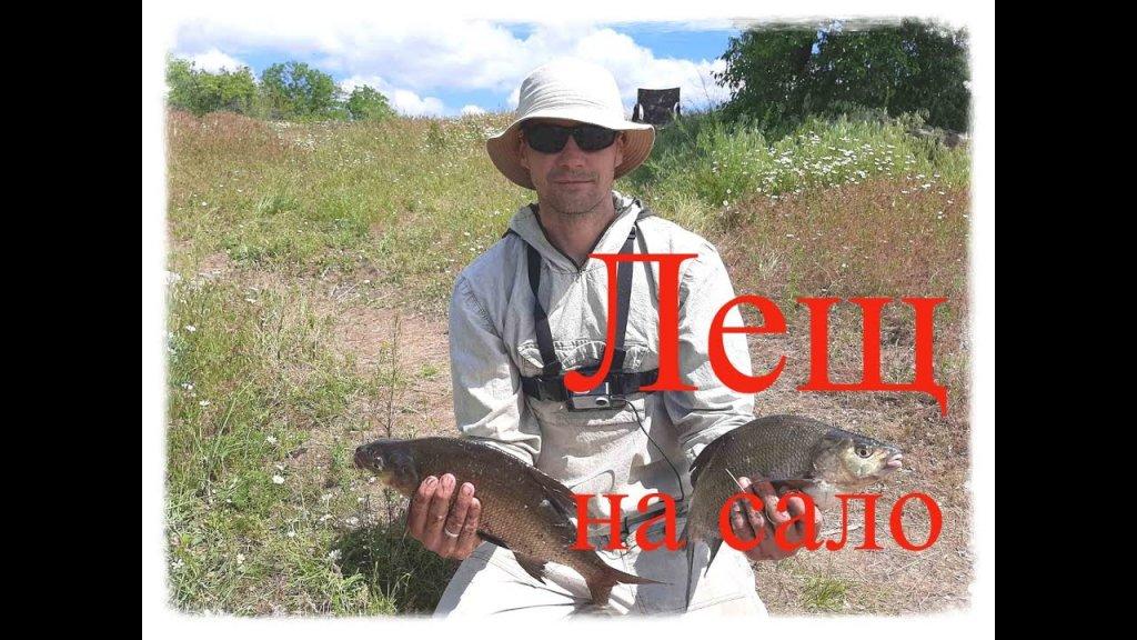Ловля ЛЕЩА на САЛО. Рыбалка на водохранилище с ночёвкой. Ловля леща на фидер и донки