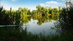 Рыбалка на поплавок летом на супер кашу. Ловим карася там где не ловится Самая эффективная прикормка