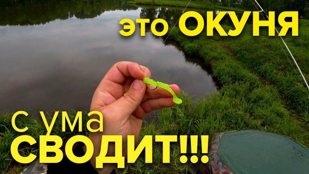 МИКРОДЖИГ РАЗДАЕТ на знакомом ПРУДУ после дождя!  Ловля окуня на микроджиг летом. (рыбалка на окуня)